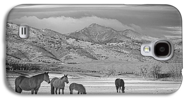 Landscape Acrylic Prints Galaxy S4 Cases - Rocky Mountain Country Morning BW Galaxy S4 Case by James BO  Insogna