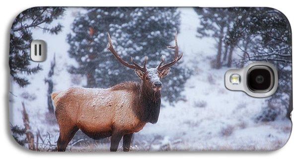 Snow Tree Prints Galaxy S4 Cases - Rocky Mountain Elk Galaxy S4 Case by Darren  White