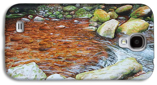 Rocky Stream Galaxy S4 Case by Mike Ivey
