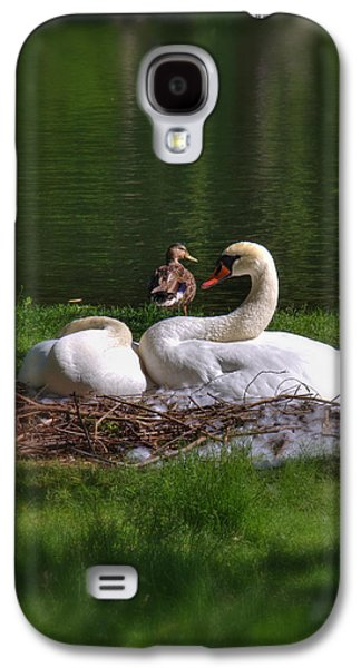 Swan Pair Galaxy S4 Cases - Romeo and Juliet in Boston Galaxy S4 Case by Joann Vitali