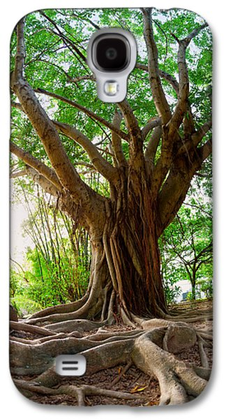 Tree Roots Galaxy S4 Cases - Roots Galaxy S4 Case by Alexey Stiop