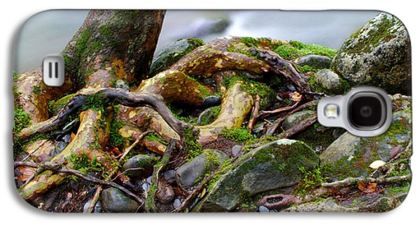 Tree Roots Galaxy S4 Cases - Roots By The Stream Galaxy S4 Case by Nancy Mueller