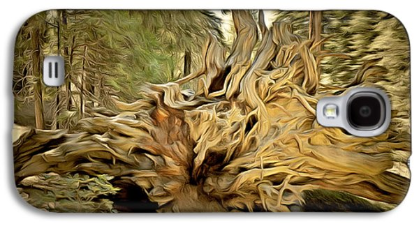Tree Roots Galaxy S4 Cases - Roots Of A Fallen Giant Sequoia Galaxy S4 Case by Barbara Snyder