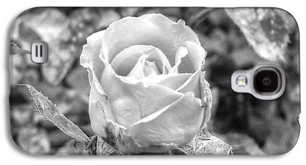 Fauna Pyrography Galaxy S4 Cases - Rose Black Galaxy S4 Case by Yury Bashkin