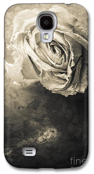 Studio Photographs Galaxy S4 Cases - Rose From Another Day Galaxy S4 Case by Edward Fielding