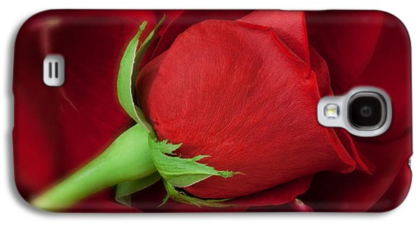 Rose II Galaxy S4 Case by Andreas Freund