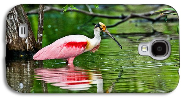 Roseate Spoonbill Wading Galaxy S4 Case by Anthony Mercieca