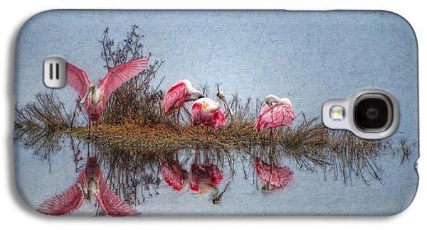 Roseate Spoonbills At Rest Galaxy S4 Case by Lianne Schneider