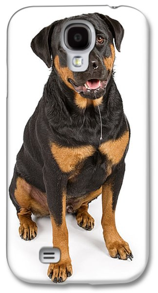 Guard Dog Galaxy S4 Cases - Rottweiler dog with drool Galaxy S4 Case by Susan  Schmitz