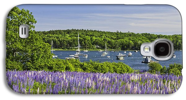 Round Pond Lupine Flowers On The Coast Of Maine Galaxy S4 Case by Keith Webber Jr