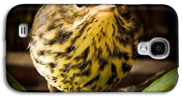 Round Warbler Galaxy S4 Case by Karen Wiles