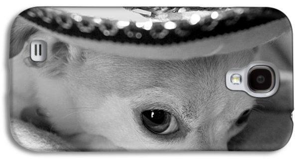 Dogs Digital Galaxy S4 Cases - Roxie Galaxy S4 Case by Glennis Siverson