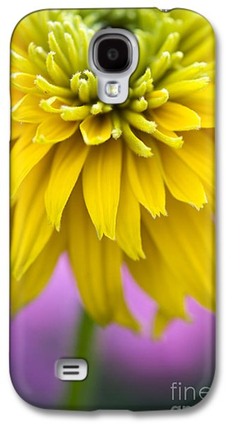 Abstracted Coneflowers Galaxy S4 Cases - Rudbeckia Cherokee Sunset Flower Galaxy S4 Case by Tim Gainey