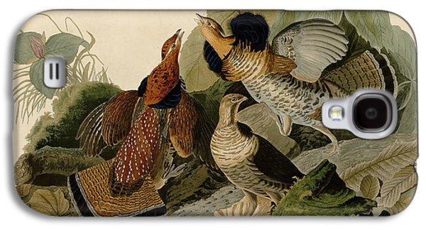 Wild Life Drawings Galaxy S4 Cases - Ruffed Grouse Galaxy S4 Case by John James Audubon