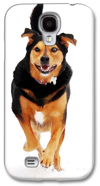 Puppy Digital Art Galaxy S4 Cases - Running Dog Art Galaxy S4 Case by Christina Rollo