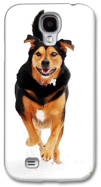 Dogs Digital Galaxy S4 Cases - Running Dog Art Galaxy S4 Case by Christina Rollo