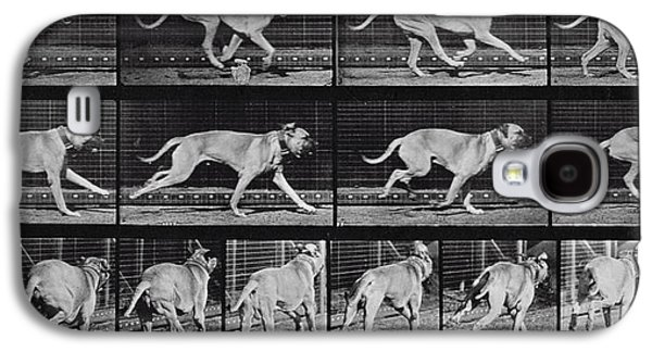 Dog Running. Galaxy S4 Cases - Running Dog Galaxy S4 Case by Eadweard Muybridge