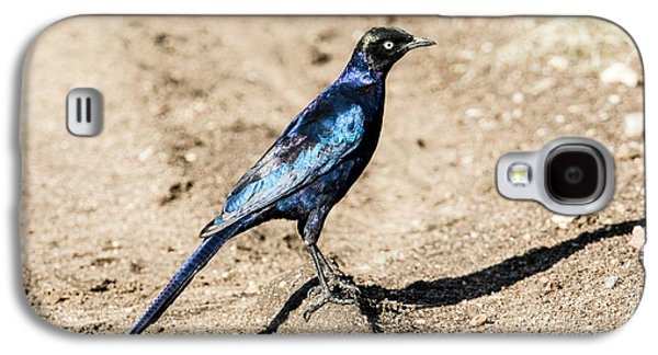 Ruppell's Glossy-starling Galaxy S4 Case by Photostock-israel