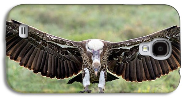 Ruppells Griffon Vulture Gyps Galaxy S4 Case by Panoramic Images