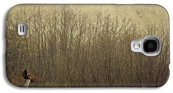 Rural Maine Roads Galaxy S4 Cases - Rural Mailbox Galaxy S4 Case by Karin Pinkham