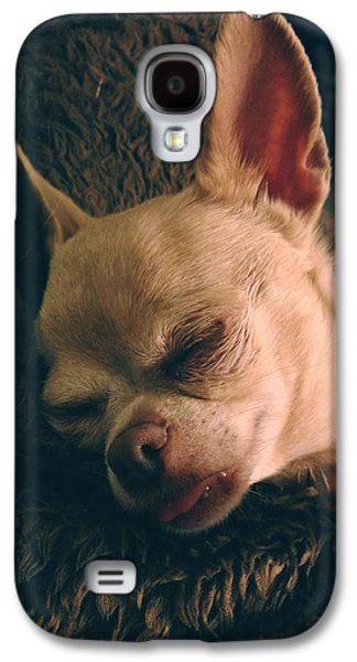 Toy Dog Galaxy S4 Cases - Sacked Out Galaxy S4 Case by Laurie Search