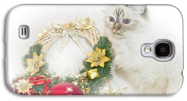 Breed Digital Art Galaxy S4 Cases - Sacred Cat of Burma CHRISTMAS TIME Galaxy S4 Case by Melanie Viola