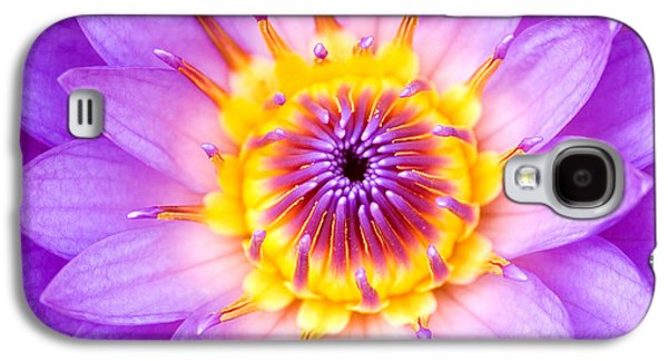 Religious Galaxy S4 Cases - Sacred Indian Blue Lotus Galaxy S4 Case by Tim Gainey