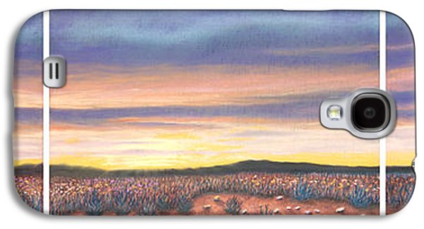 Skylines Pastels Galaxy S4 Cases - Sagebrush Sunset Triptych Galaxy S4 Case by Michael Heikkinen