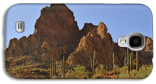 Galaxy S4 Cases - Saguaros - Symbol of the Desert Southwest Galaxy S4 Case by Christine Till