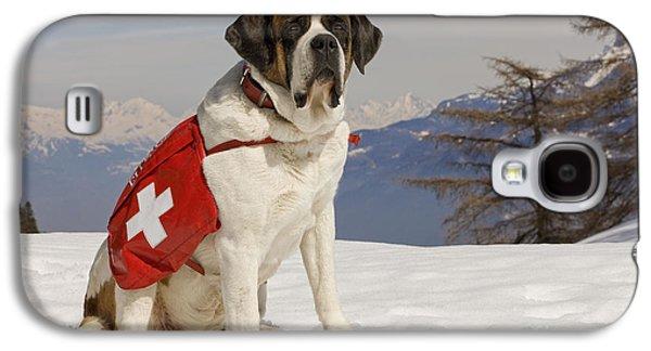 Dog In Landscape Galaxy S4 Cases - Saint Bernard Rescue Dog Galaxy S4 Case by Jean-Michel Labat