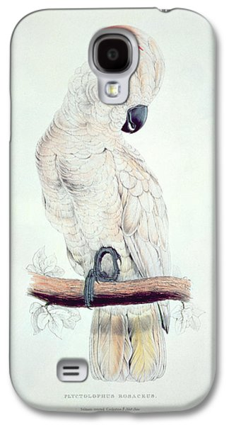 Salmon Paintings Galaxy S4 Cases - Salmon Crested Cockatoo Galaxy S4 Case by Edward Lear