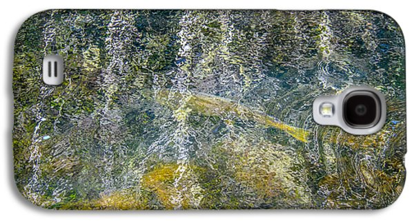Trees Reflecting In Creek Galaxy S4 Cases - Salmon Run Beneath The Forest Reflection Galaxy S4 Case by Roxy Hurtubise