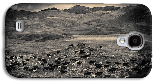 Salt And Pepper Pasture Galaxy S4 Case by Todd Klassy