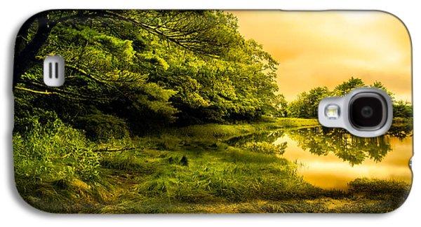 Dreamscape Galaxy S4 Cases - Salt Marsh Kittery Maine Galaxy S4 Case by Bob Orsillo