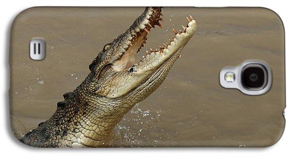 Salt Water Crocodile Australia Galaxy S4 Case by Bob Christopher