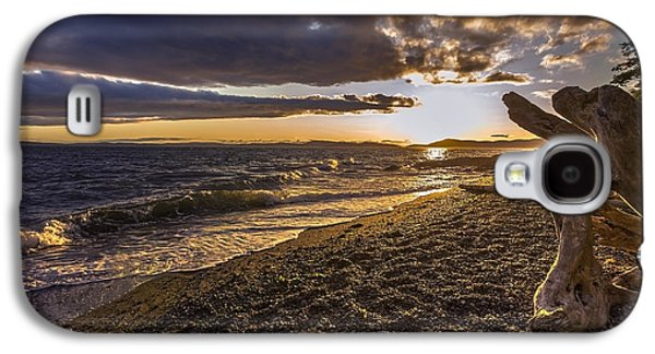 Beach Landscape Galaxy S4 Cases - San Juans Majestic Driftwood Galaxy S4 Case by Mike Reid