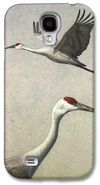 Flight Galaxy S4 Cases - Sandhill Cranes Galaxy S4 Case by James W Johnson