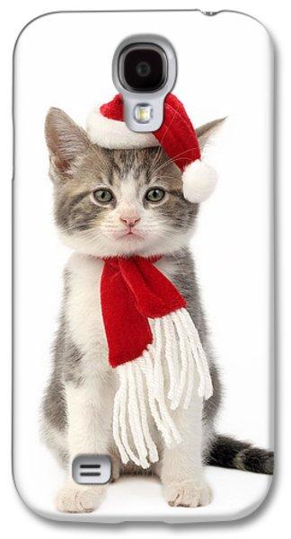 Rudolph Galaxy S4 Cases - Santa Kitten Galaxy S4 Case by Greg Cuddiford