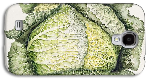 Botanical Galaxy S4 Cases - Savoy Cabbage Wc Galaxy S4 Case by Alison Cooper
