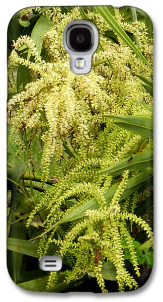 St. Lucie County Galaxy S4 Cases - Saw Palmetto Galaxy S4 Case by Grace Dillon