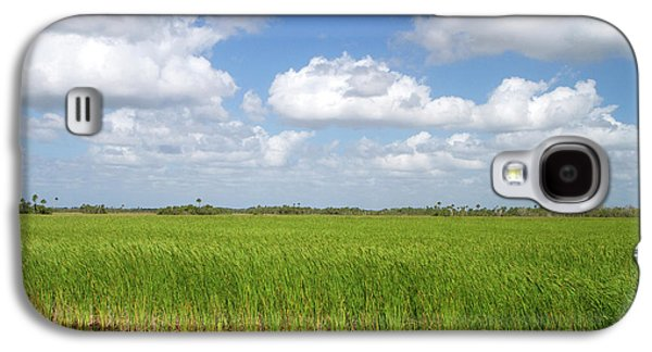 Sawgrass In The Florida Everglades Galaxy S4 Case by David R. Frazier