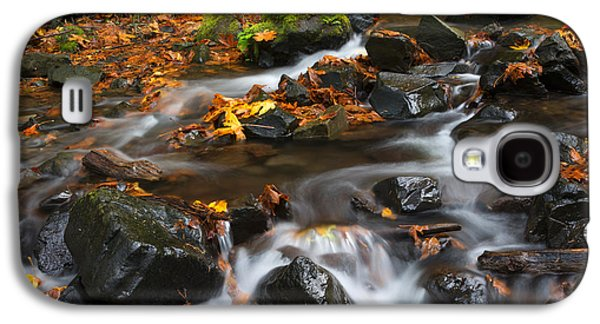 Maple Season Galaxy S4 Cases - Scattered Seasons Galaxy S4 Case by Mike Dawson