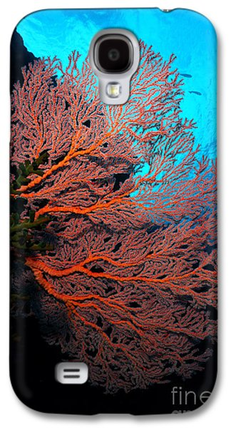Plankton Galaxy S4 Cases - Sea Fan Galaxy S4 Case by Aaron Whittemore