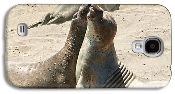 Sea Lion Birthing Grounds Galaxy S4 Cases - Sea Lion Love from the book MY OCEAN Galaxy S4 Case by Artist and Photographer Laura Wrede