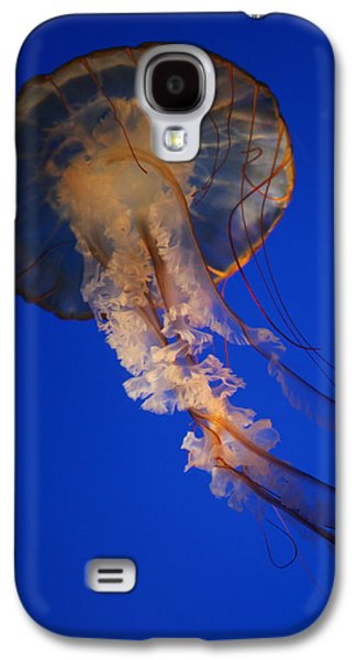 Underwater Photos Galaxy S4 Cases - Sea Nettles v 11 Galaxy S4 Case by Donna Corless