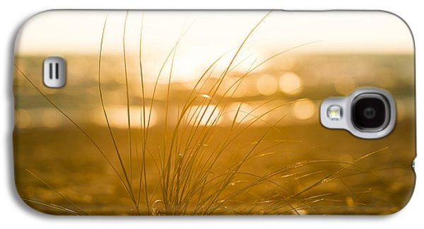 Sun Rays Galaxy S4 Cases - Sea Oats Sunset Galaxy S4 Case by Sebastian Musial