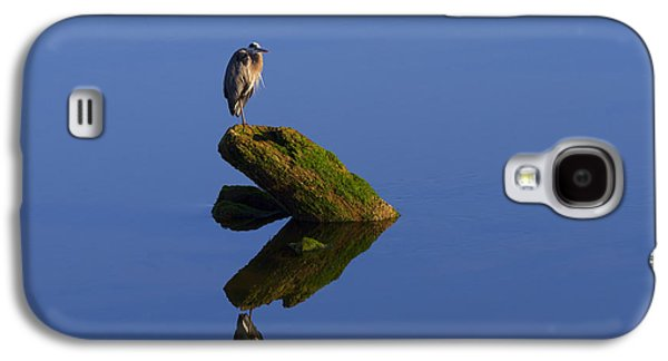 Great Birds Galaxy S4 Cases - Sea of Tranquility Galaxy S4 Case by Mike  Dawson