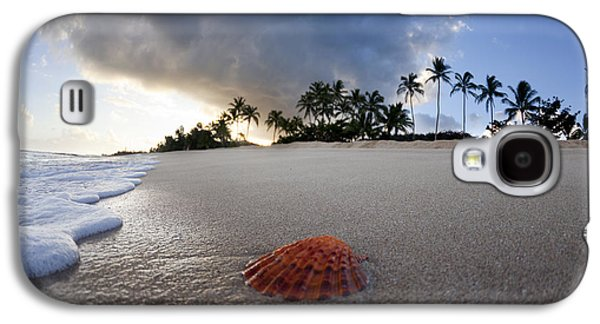 Tropical Oceans Galaxy S4 Cases - Sea Shell Sunrise Galaxy S4 Case by Sean Davey
