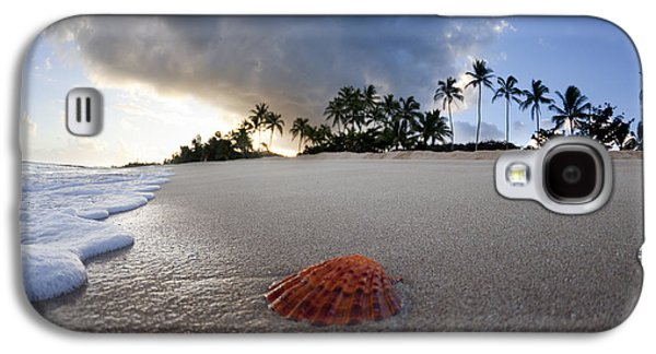 Ocean Shore Galaxy S4 Cases - Sea Shell Sunrise Galaxy S4 Case by Sean Davey