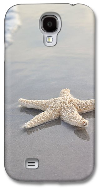Morning Galaxy S4 Cases - Sea Star Galaxy S4 Case by Samantha Leonetti